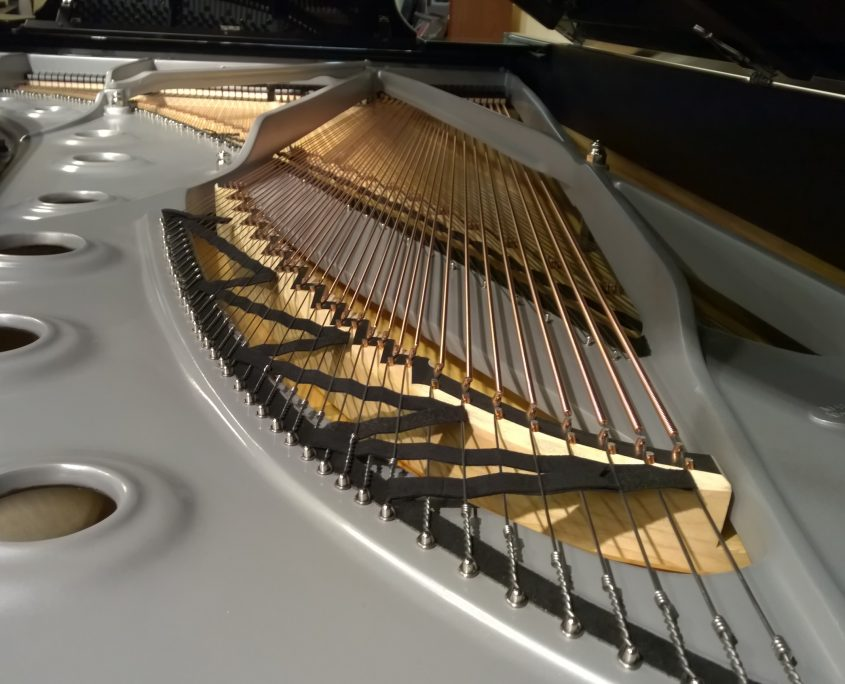 Steinway & Sons Sterling D
