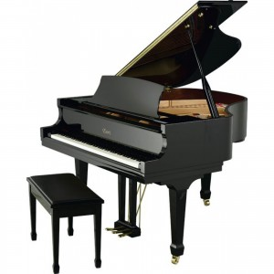 Essex EGP155EP Grand Piano
