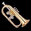 Flugel Horn Image