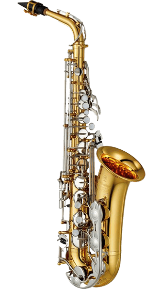 Renting a Tenor Sax Image