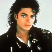 Young Michael Jackson Portrait
