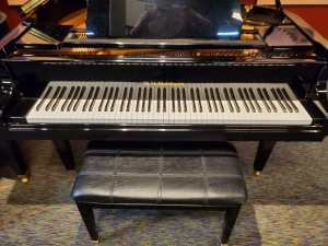 """DH Baldwin Grand with QRS Player 4'8"""""""